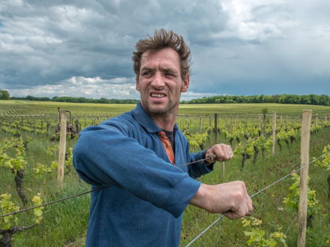 Gueules de vignerons - Jean-Yves Bardin