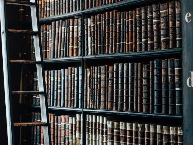 Fonds littéraire de la Bibliothèque universitaire Belle Beille