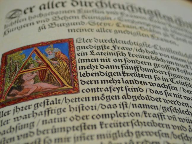 Fonds ancien de la Bibliothèque diocésaine du Mans
