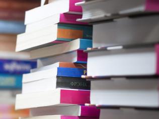 Règles pour la rédaction des notices bibliographiques