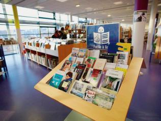 L'offre de lecture « Facile à lire » dans les bibliothèques et les lieux de médiation