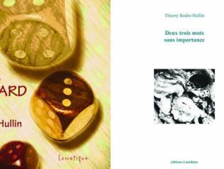 Un pur hasard et Deux trois mots sans importance, de Thierry Bodin-Hullin