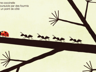 La coccinelle, haïkus pour enfants, de Patrick Gillet et Toni Demuro