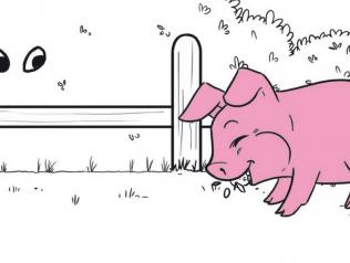 La collection Cartoons de Layla Benadid, aux éditions Rêves Bleus