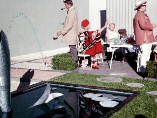 Jardins du cinéma, de Michel Berjon