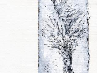 Le dernier cerisier, de John Taylor