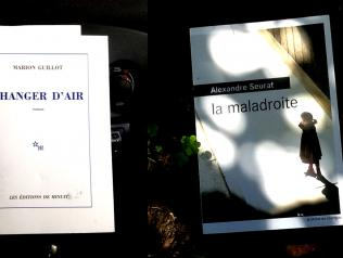 Deux primo-romanciers en région Pays-de-la-Loire : Marion Guillot et Alexandre Seurat