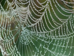 Patrimoine et création : quelles rencontres possibles ?