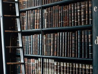 Fonds d'archives Association des Chiennes de garde