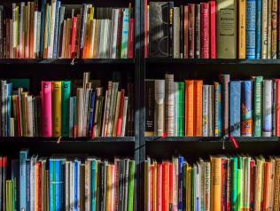 La Médiathèque La Bulle de Mazé-Milon (49) recrute en CDD un.e Bibliothécaire