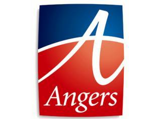 Assistant(e) fonds ancien - Ville d'Angers